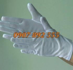 Găng tay phòng sạch cotton